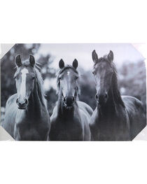 Gift Craft 3 Horse Photo Canvas Wall Decor, , hi-res