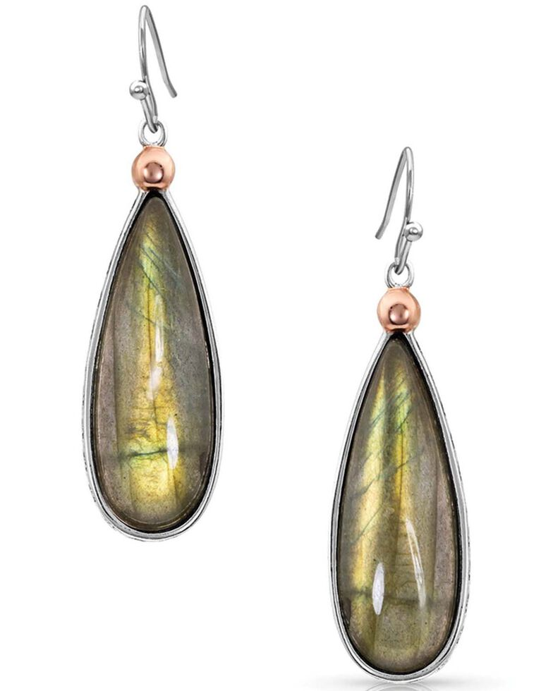 Montana Silversmiths Women's Hidden Lakes Earrings, Silver, hi-res